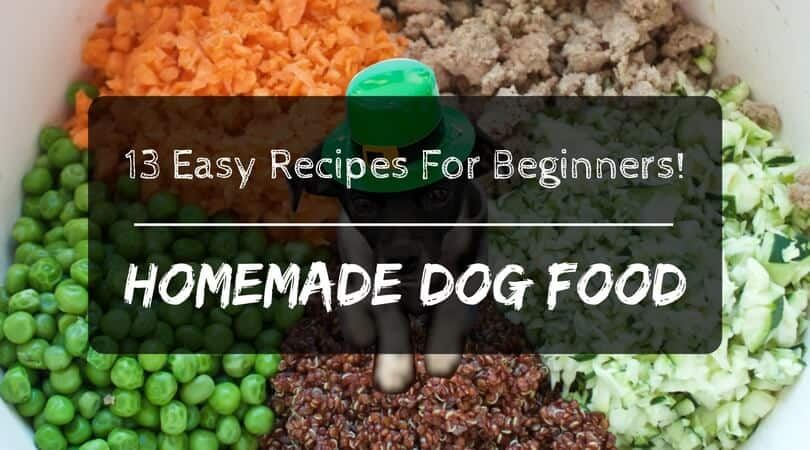 Why Make Homemade Dog Food: 13 Easy Recipes for Beginners ...