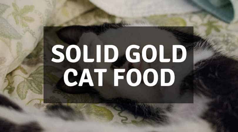 Solid Gold Cat Food Reviews