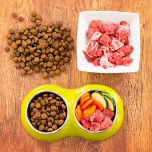 best organic dog food in the market