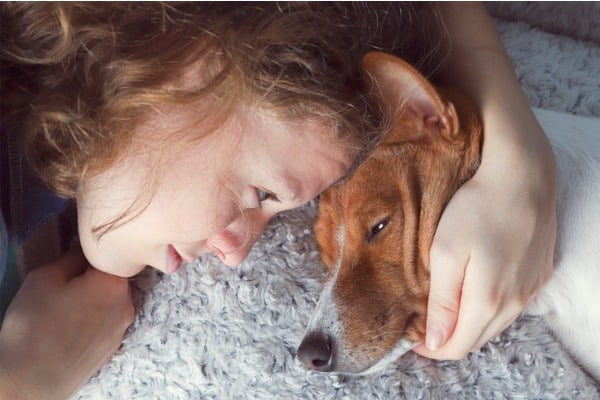 depression suppresses dog's appetite and need for food