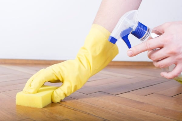 applying enzyme cleaner on your floor