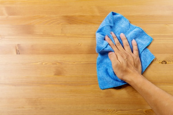clean pet stain using towel