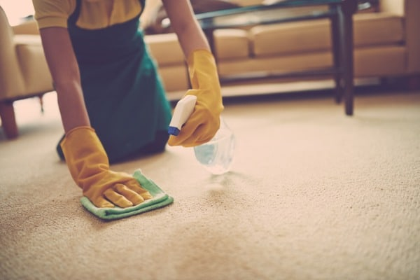deal with pet urine and carpeting