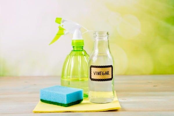 distilled vinegar and water in the spray bottle