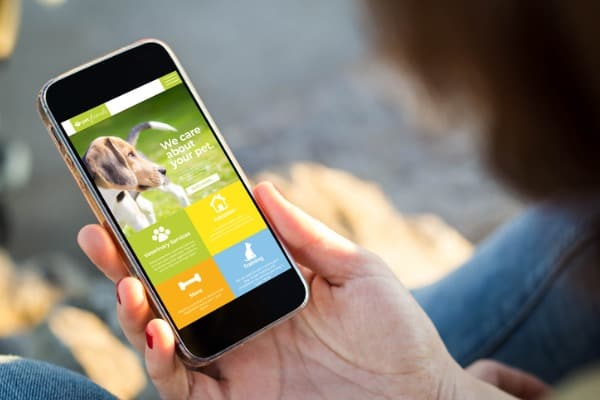 finding app for pets