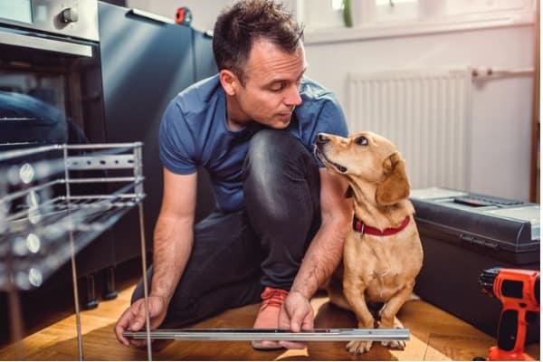 pet-proofing household fixtures