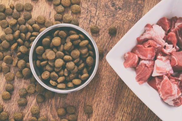 natural dry dog food