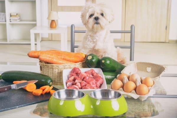 preparing-homemade-dog-food