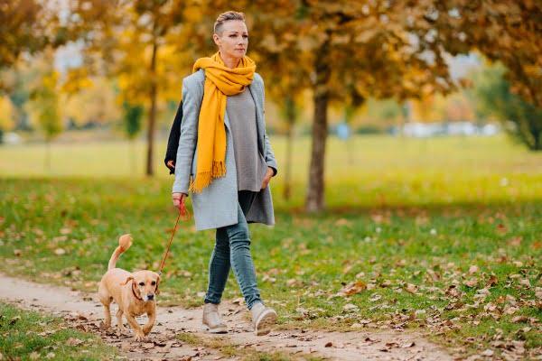 walking-dog-better-digestive-health