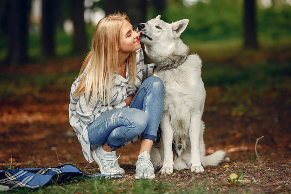 Why Is My Pooch Into Licking Peepers? Reasons Your Dog Might Lick Your Eyes And When You Should Worry